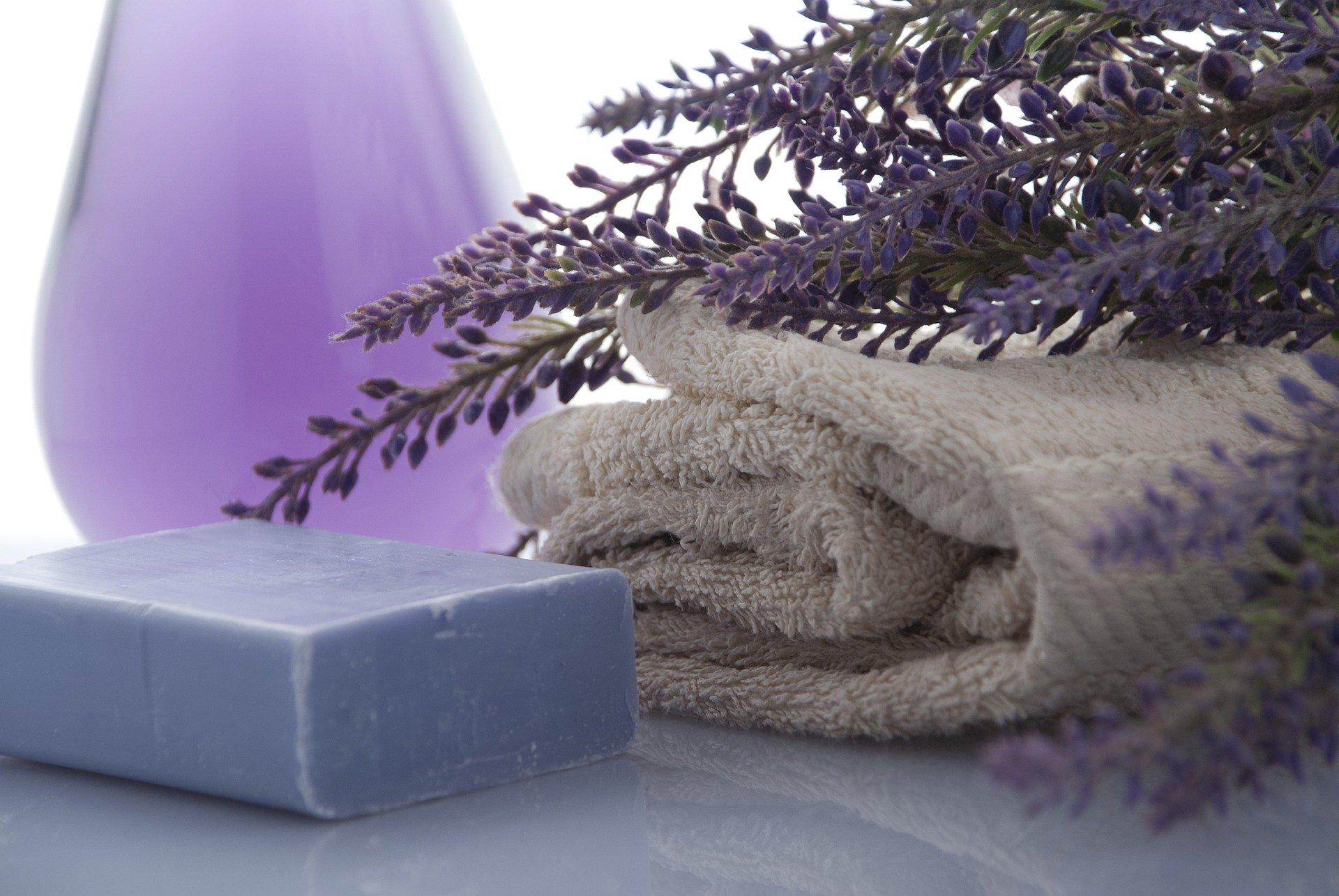 lavender 3066531 1920